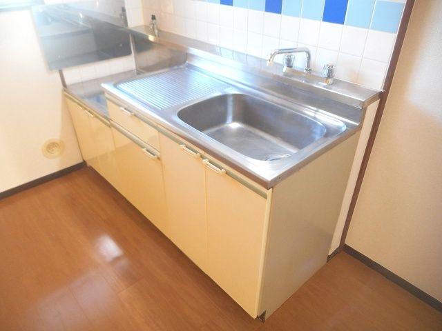 ニューシティ下田 01010号室のキッチン