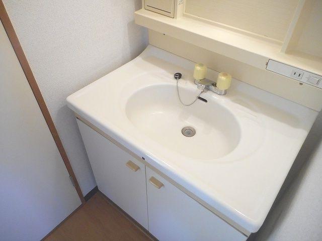 ニューシティ下田 01010号室の洗面所