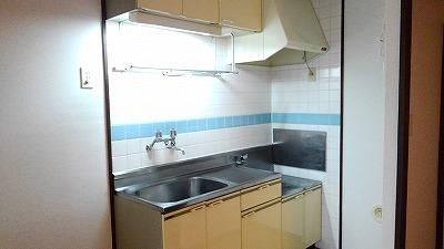 エルディム比治山 01010号室のキッチン