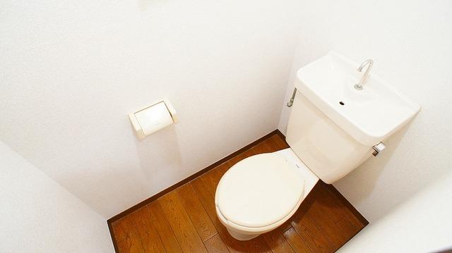友和ハイツ 01030号室のトイレ