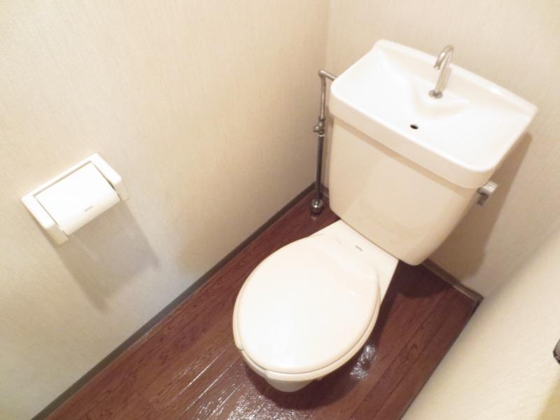 グリーンリバー泉台B 01020号室のトイレ