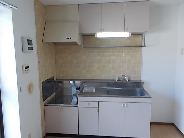 ニューエルディム伊藤A 01010号室のキッチン