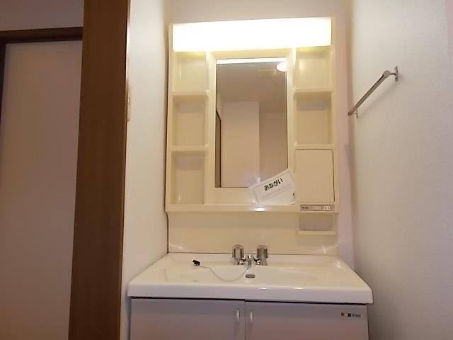ニューエルディム伊藤A 01010号室の洗面所