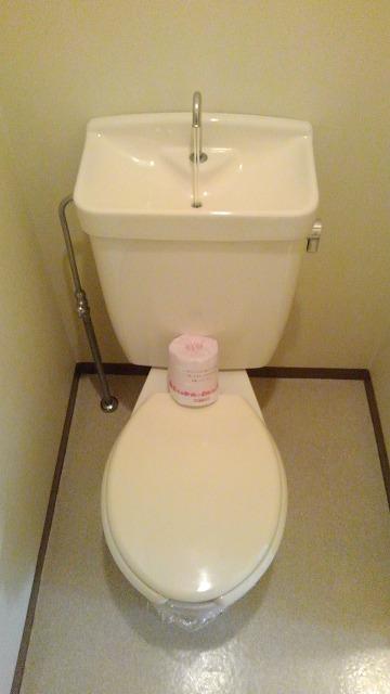 エルディム蓮田シティⅡ 01020号室のトイレ