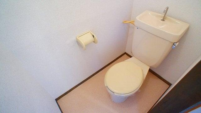 エルディム山田 02010号室のトイレ