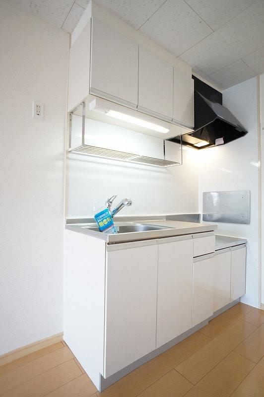 サンヒルズ小島 02030号室のキッチン