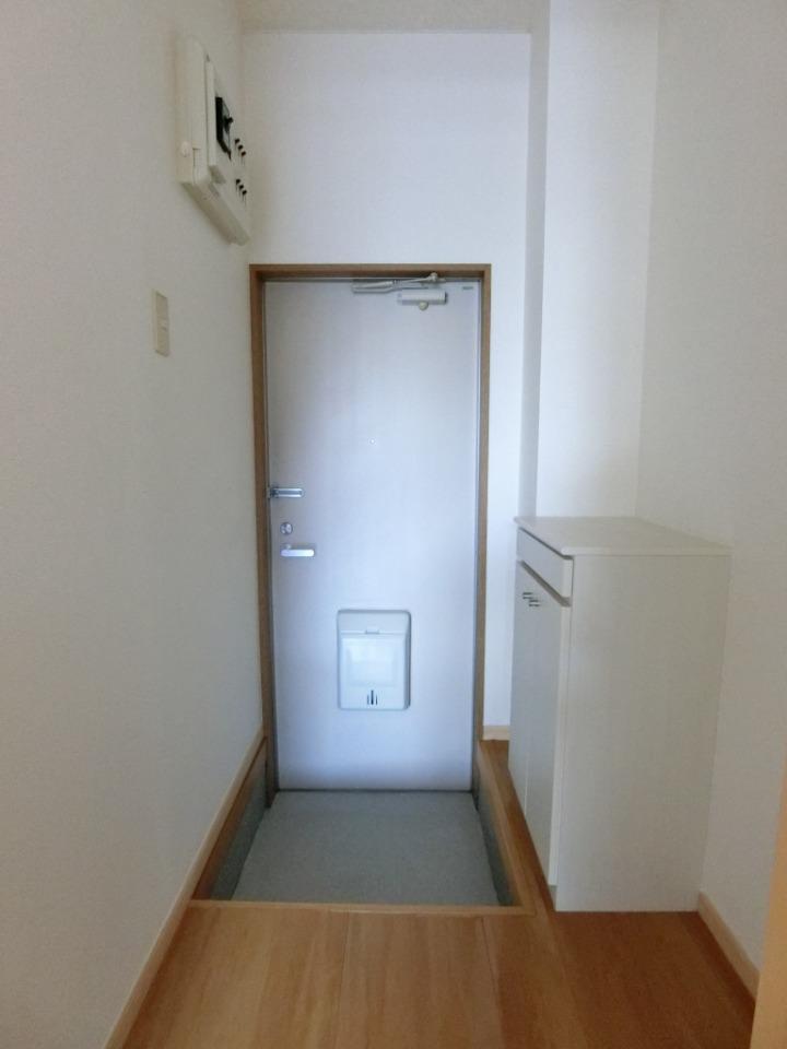 メゾンドレスポワール 01010号室の洗面所