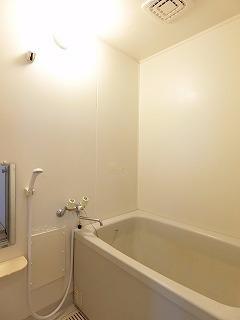 メゾンドレスポワール 01030号室の風呂