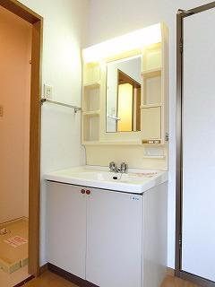 メゾンドレスポワール 01030号室の洗面所
