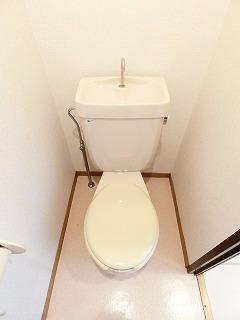 メゾンドレスポワール 01030号室のトイレ