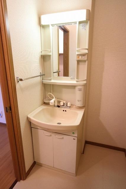 シャルマン 01010号室の洗面所