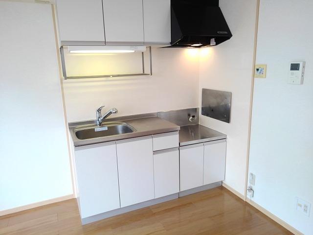 ドリームハイツA 01010号室のキッチン