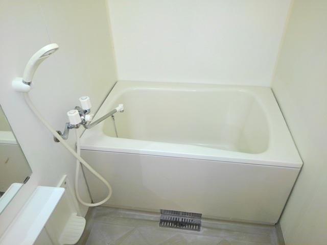 ドリームハイツA 01010号室の風呂