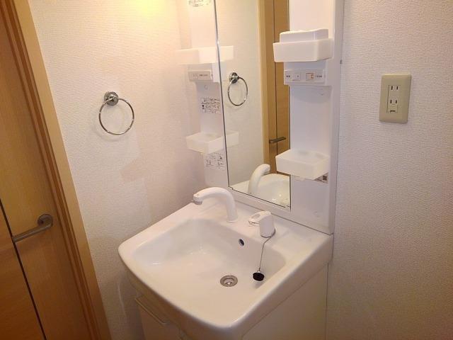 ドリームハイツA 01010号室の洗面所