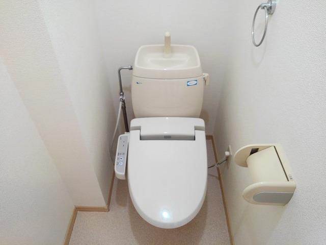 ドリームハイツA 01010号室のトイレ