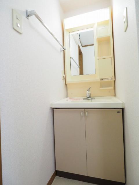 キャラバンサライ壱番館 02010号室の洗面所