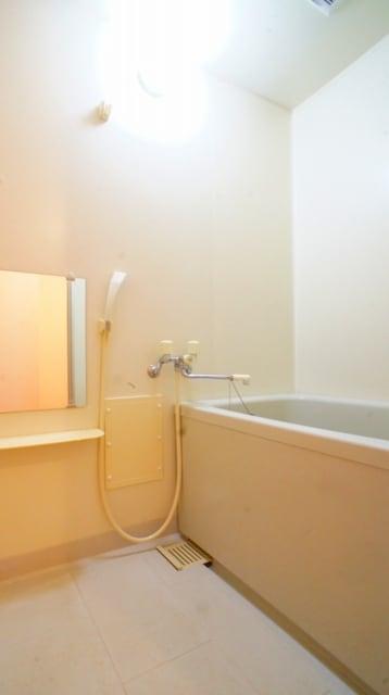 シャン ド フルールB 02010号室の風呂