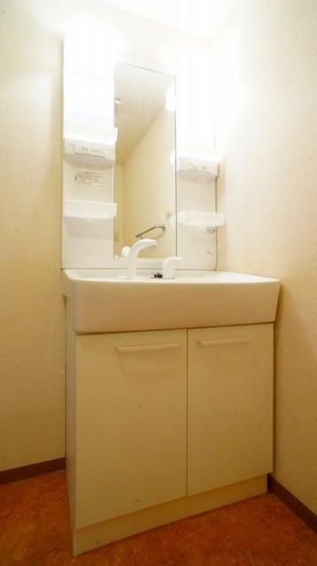 シャン ド フルールB 02010号室の洗面所