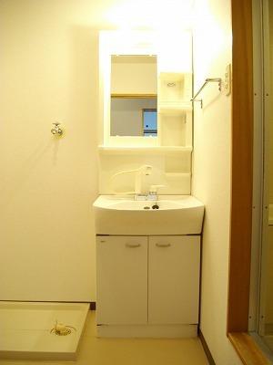 サニーコ-ト 03020号室の洗面所