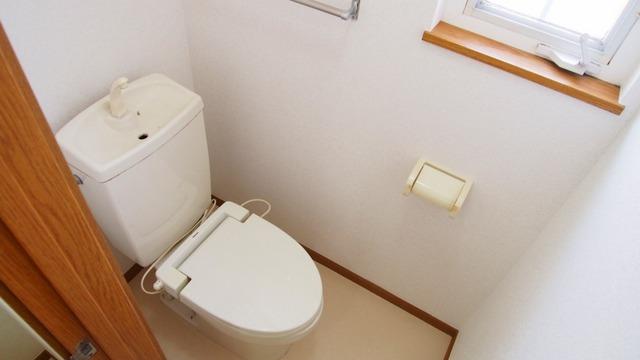 クレストハイツ 02030号室のトイレ