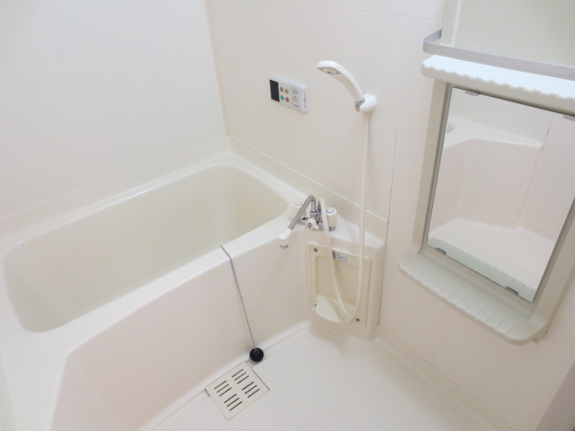 ルミエ-ル・上 01020号室の風呂