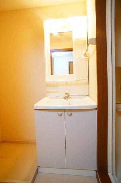 フレール与野本町 01030号室の洗面所