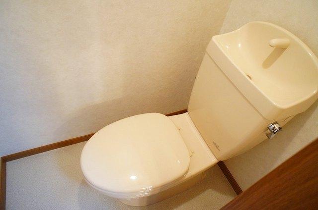 フレール与野本町 01030号室のトイレ