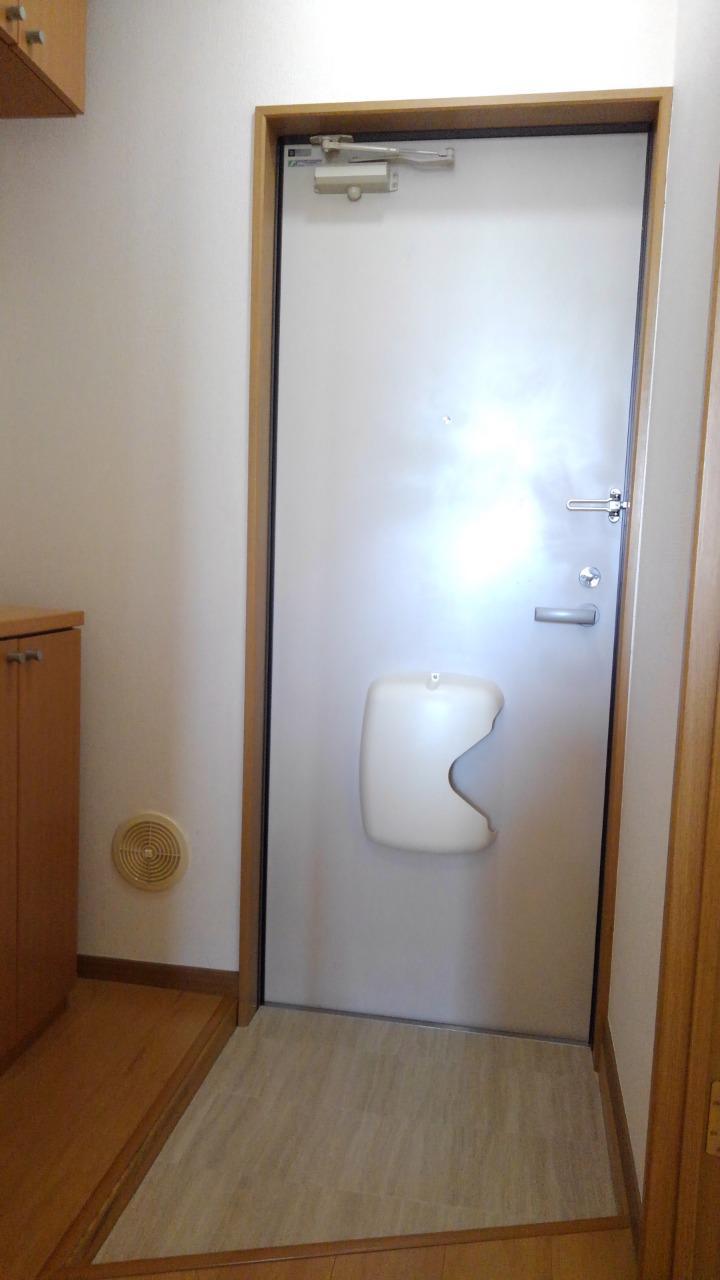 コーポ・アンソレイエ 02020号室の玄関
