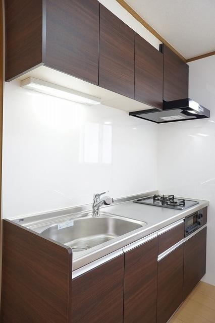 ファインモルティB 02010号室のキッチン