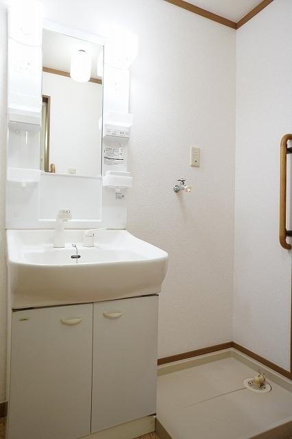 ファインモルティB 02010号室の洗面所
