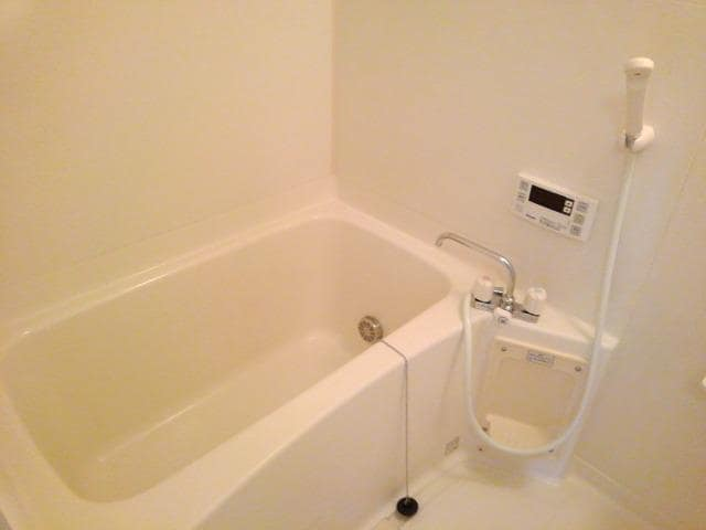 ピエ デルモンテ 02030号室の風呂