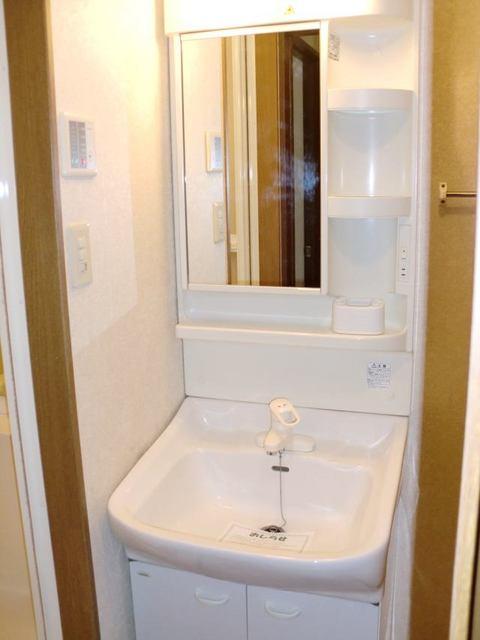 リュミエール 01040号室の洗面所