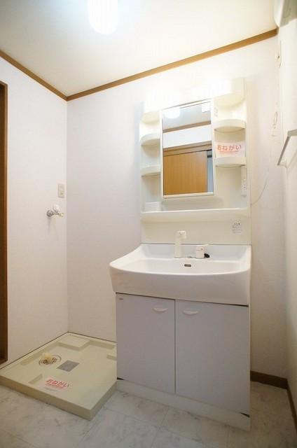 クリスタルバレー 01010号室の洗面所
