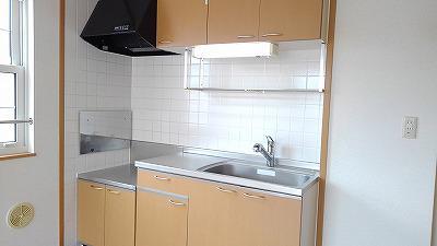グランディ Ⅲ 02010号室のキッチン