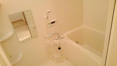 グランディ Ⅲ 02010号室の風呂