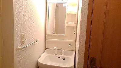 グランディ Ⅲ 02010号室の洗面所
