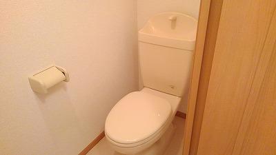 グランディ Ⅲ 02010号室のトイレ