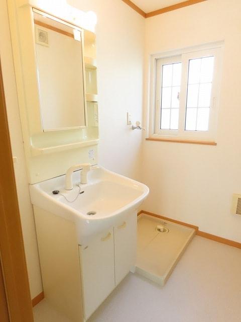 ヴェルドミールB 01020号室の洗面所