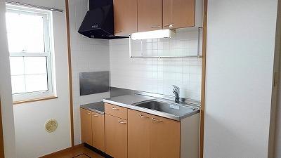 パークヒルズ・ヒロ 01010号室のキッチン