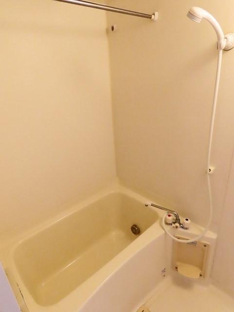 メゾン・ソレイユ A 02010号室の風呂