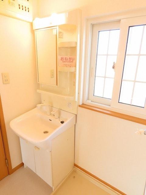 メゾン・ソレイユ A 02010号室の洗面所