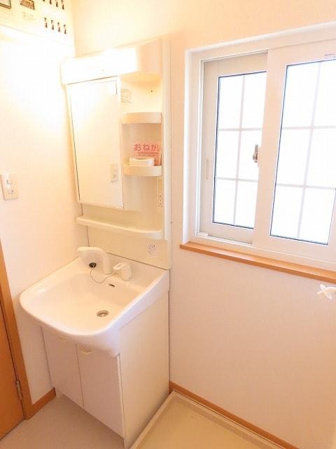 メゾン・ソレイユB 02010号室の洗面所