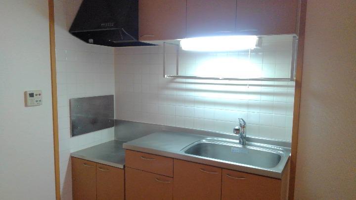 カナルガーデン 01010号室のキッチン
