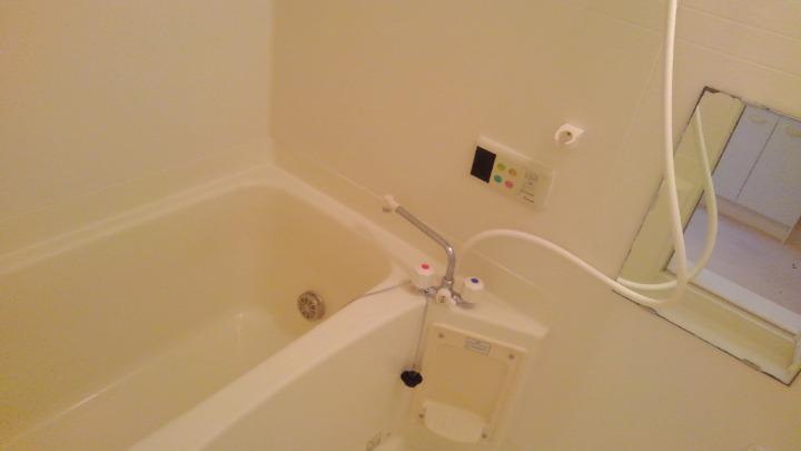 カナルガーデン 01010号室の風呂
