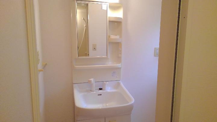 カナルガーデン 01010号室の洗面所