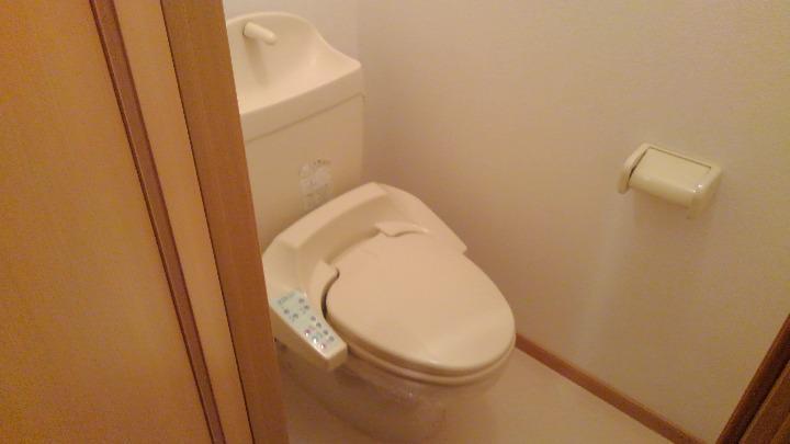 カナルガーデン 01010号室のトイレ