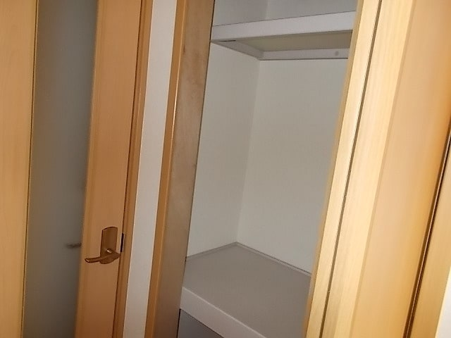 プレーヌ・フォンテーヌⅣB 01010号室の収納