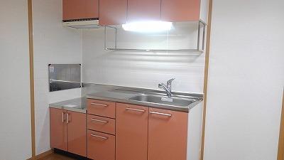 ルミエール弐番館 01030号室のキッチン
