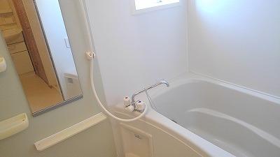 ルミエール弐番館 01030号室の風呂