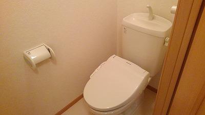 ルミエール弐番館 01030号室のトイレ
